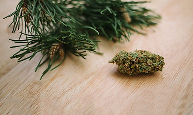 what-is-pinene-and-what-are-the-benefits