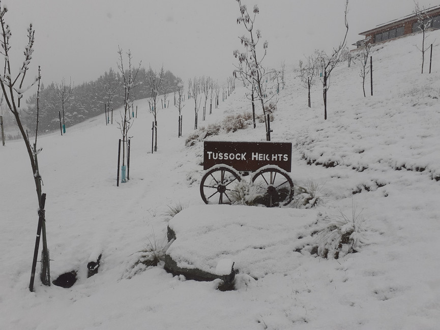 Entry to Tussock Heights (snow)