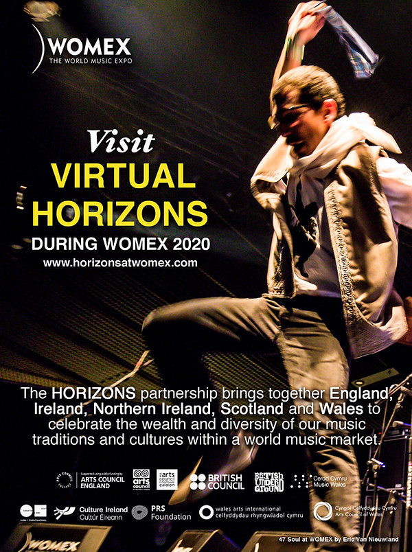 VIRTUAL HORIZONS ADVERT (v2).jpeg