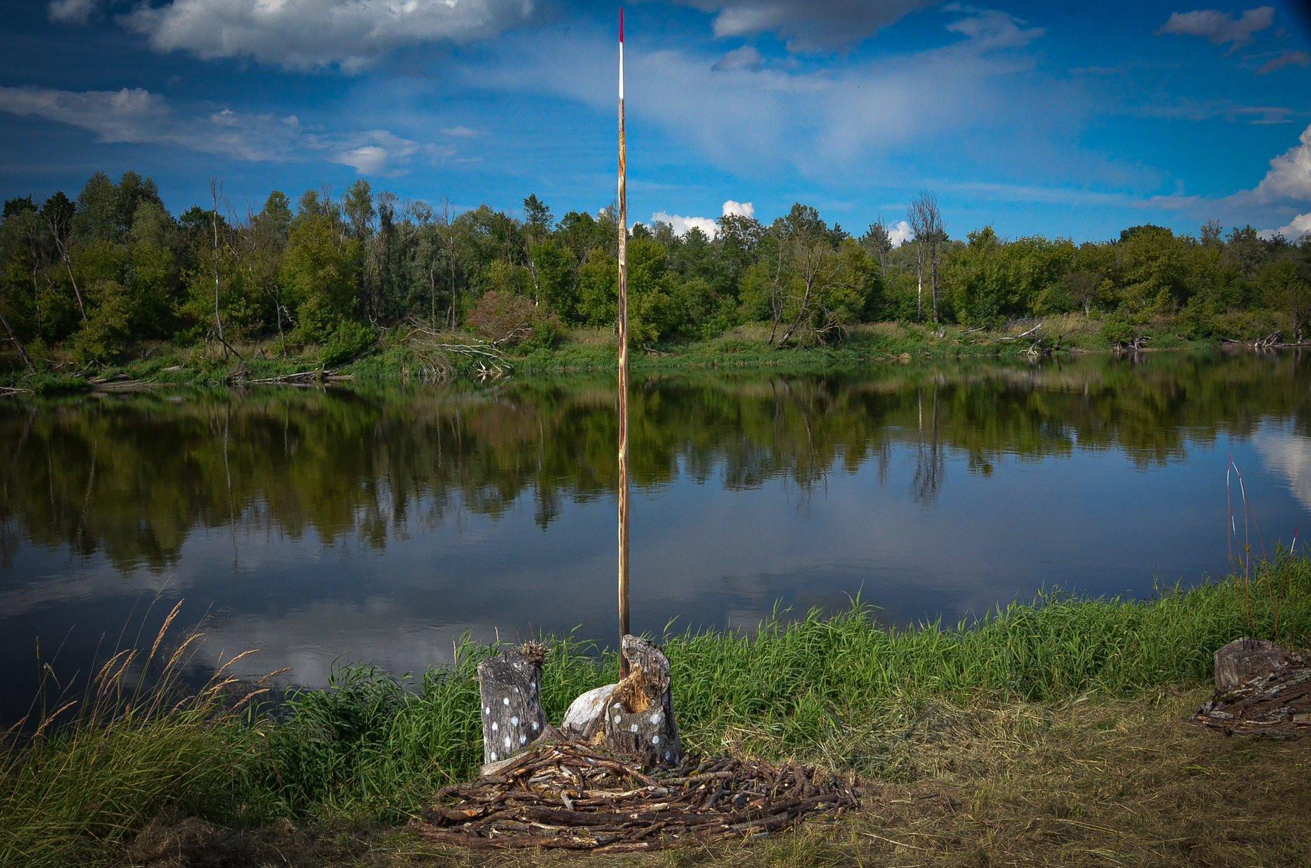 2019 - International Land Art festival Poland  Installation to stump that was engraved in Beaver