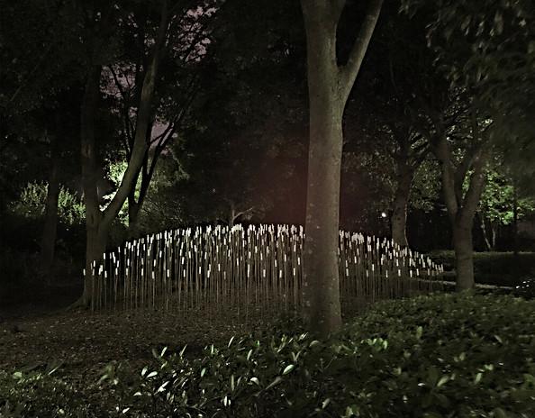 Stephane+Guiran+Japon+biennale.jpg
