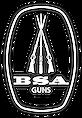 LOGO BSA GUNS WHITE.png