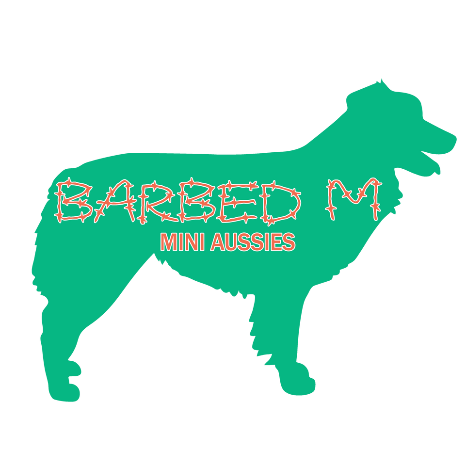 Barbed M Mini Aussies