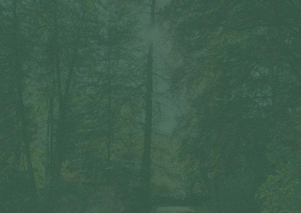 Hintergrund-Freienstein.jpg