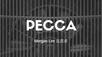 汽车系列之第一篇 : Pecca (Sofa 皮革商) undervalue了吗?