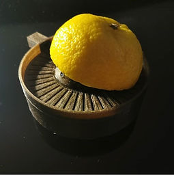presse citron.jpg