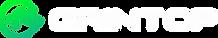 logo gritntop.webp