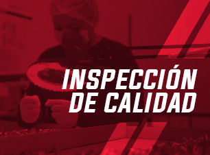 INSPECCION-1.jpg