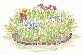PerennialsPicture.jpg