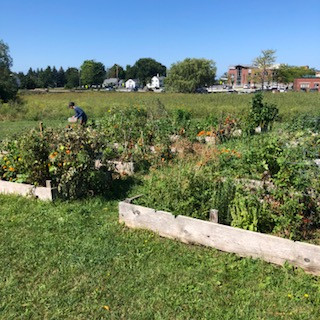 NMC Community Gardens, Reserve Your Plot!