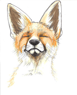 Mr. Happy Fox