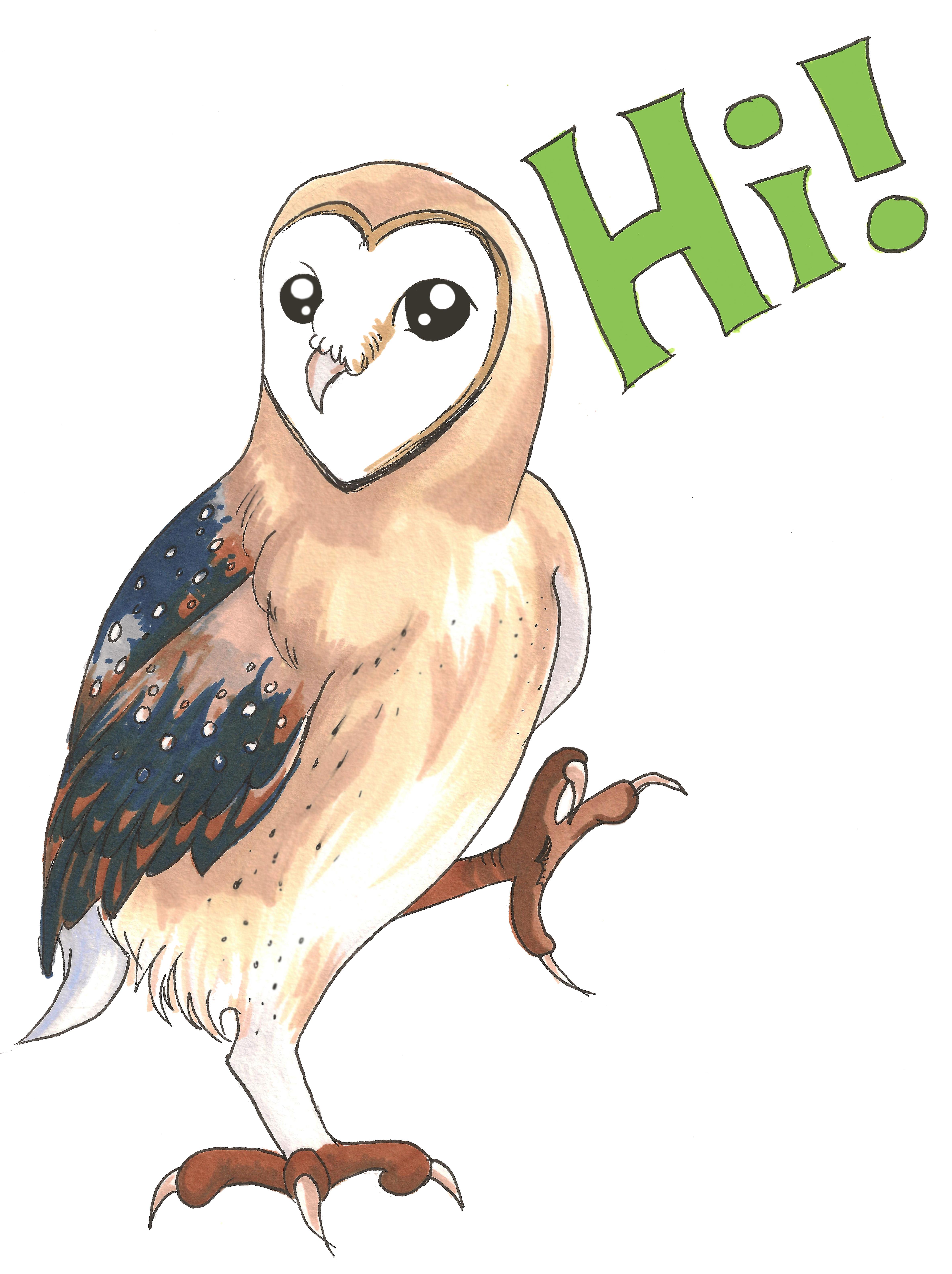 Hi! I'm An Owl