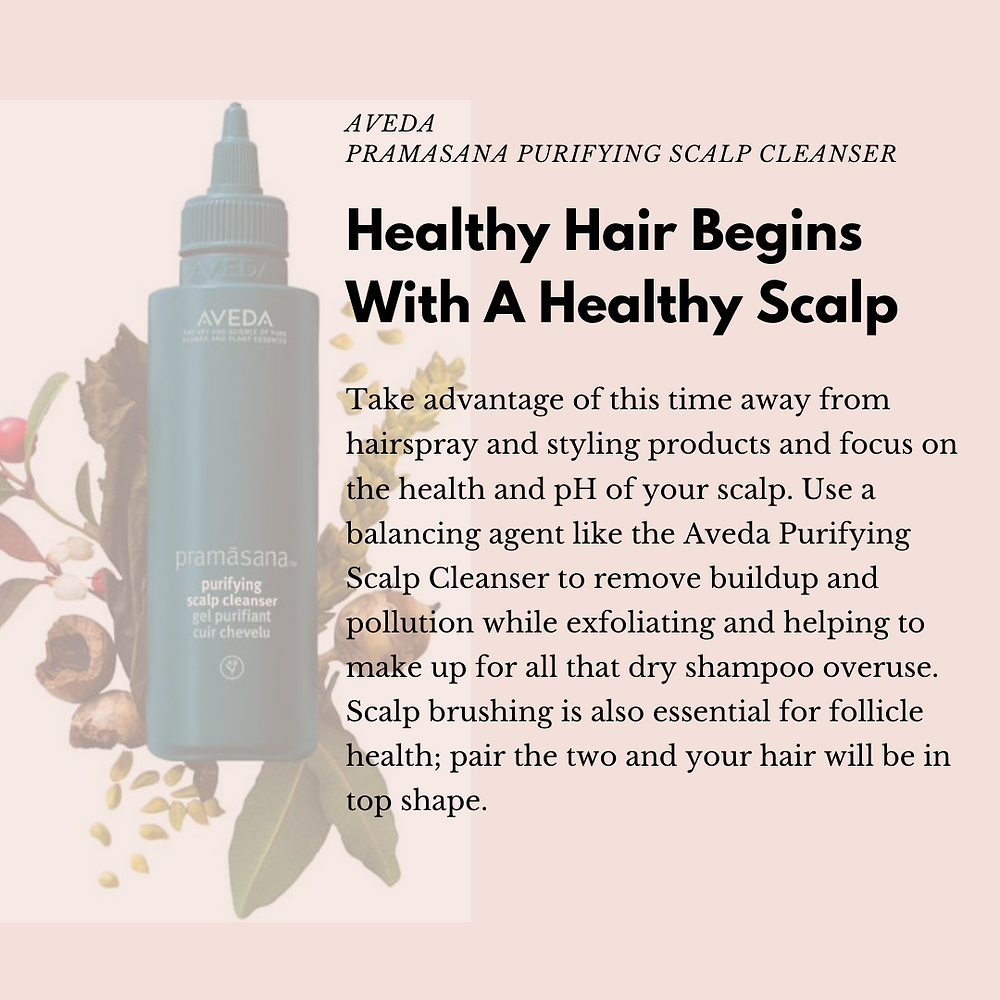 Aveda products for healthy scalp