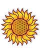 Arcata-Healing-Arts-Sun.jpg