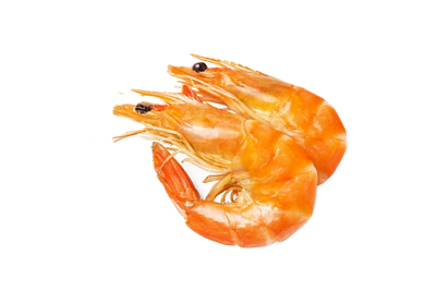 camarones_edited.png