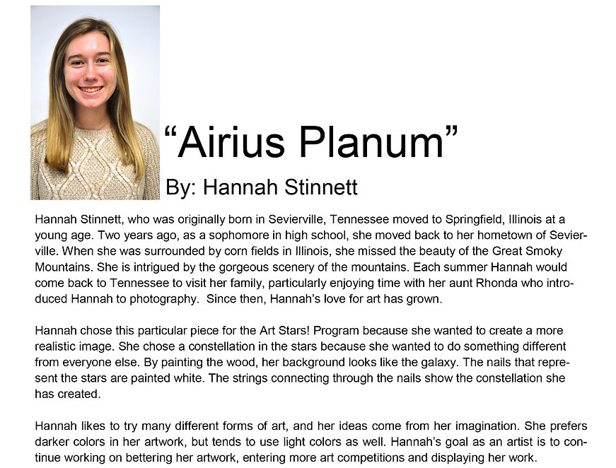 Artist bio spring semester  Hannah Stinn