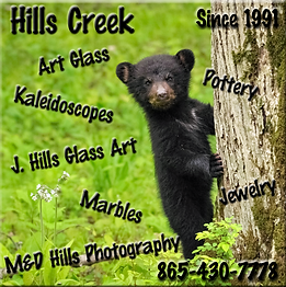 Hills Creek Profile Picture.png