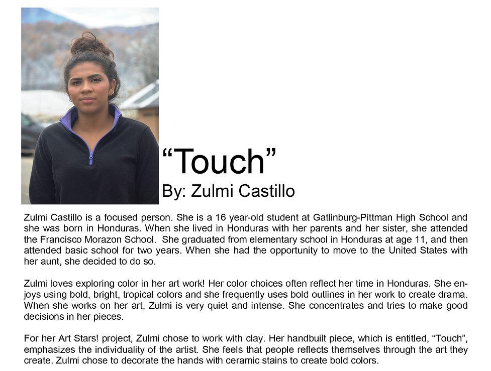 Artist bio Zulmi Castillo copy.jpg