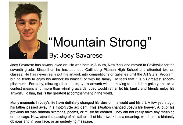 Artist bio spring semester Joey Savarese