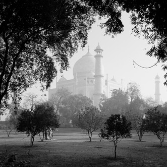a final, parting picture of the Taj - over and out