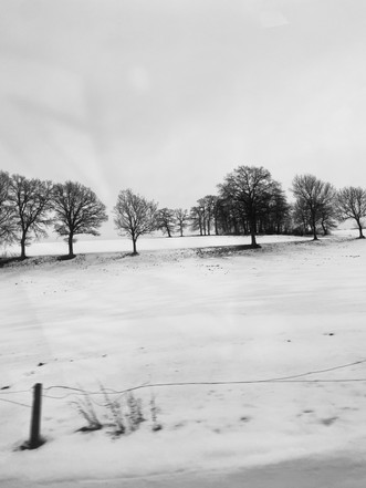 bit of iphonography from the train window, Freiburgerland