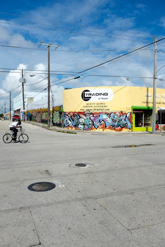 Wynwood, sneak peek