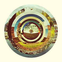 Mandala arbre.jpg