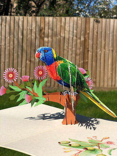 Parrot Pop up card