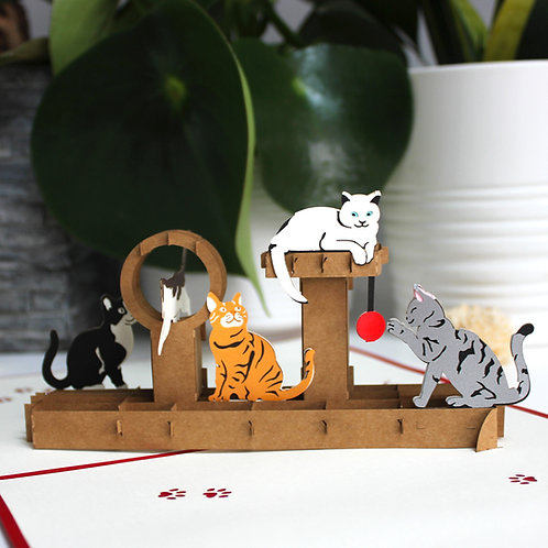 Playful Cats Pop up cards