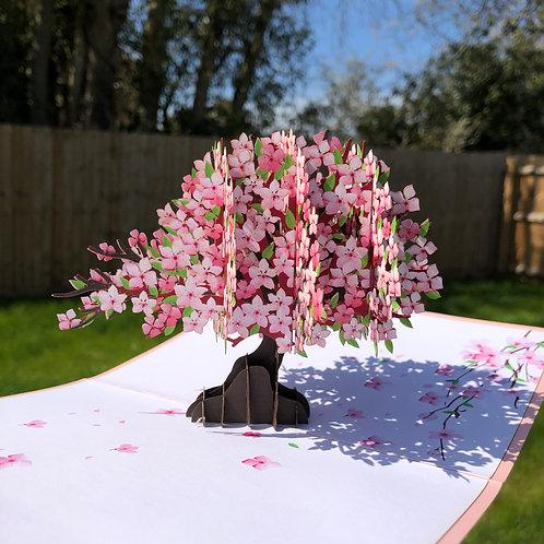 Cherry blossom tree pop up card