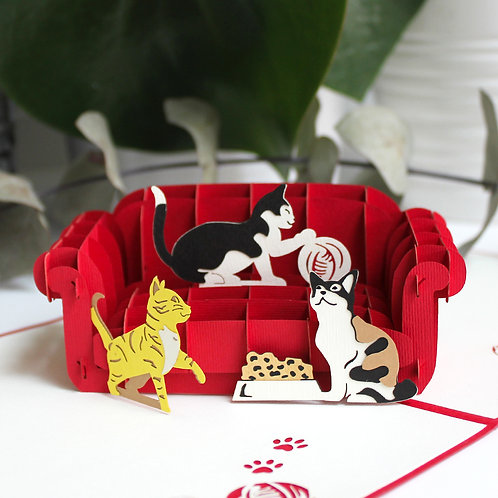 Cats on the sofa Pop up card