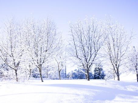 Dalla parte dell'Inverno