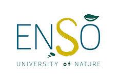 logo ENSO.JPG