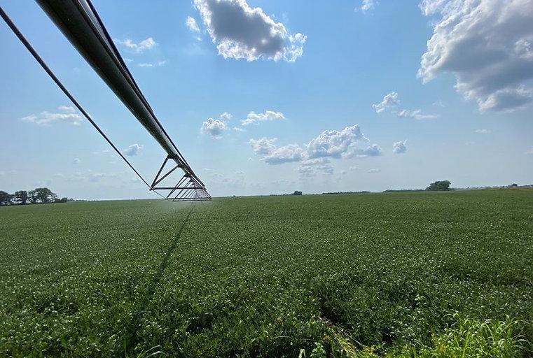 lc irrigation.jpg