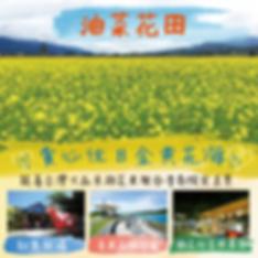 優惠0118油菜花田_工作區域 1.png