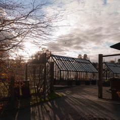 The Garden Glasshouses