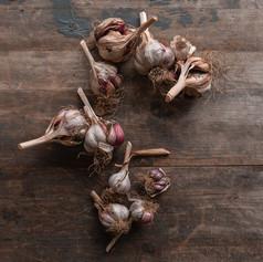 Garlic - Allium Sativum 'Red Duke'