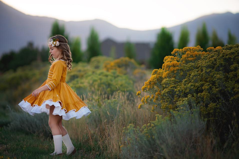 nature, fall, commercial, dress, felt, socks, well dressed wolf