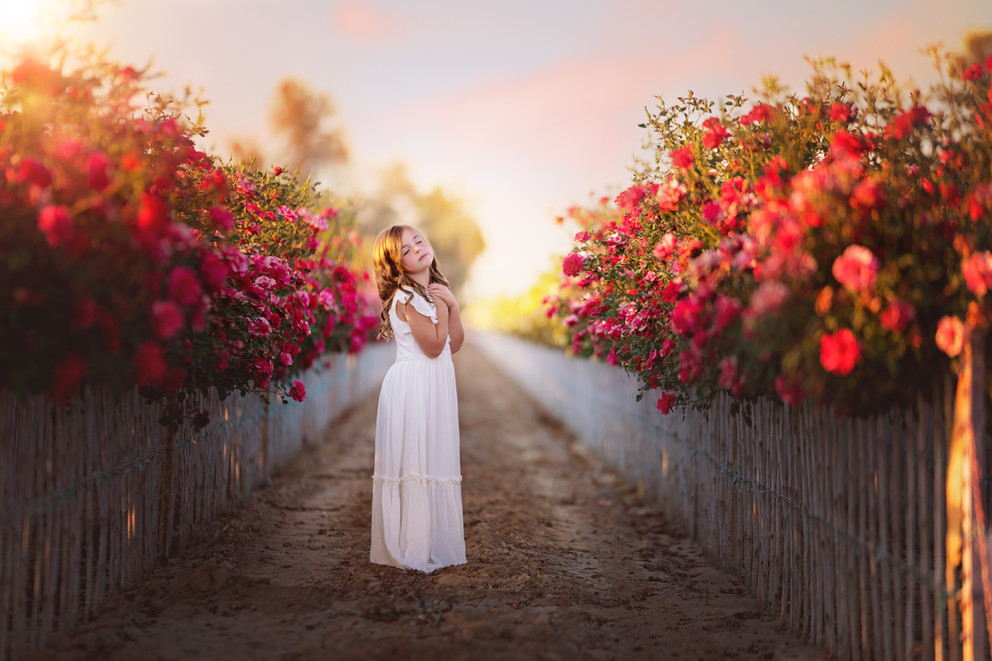 joyfolie, baptism, rose field, natural light, editorial