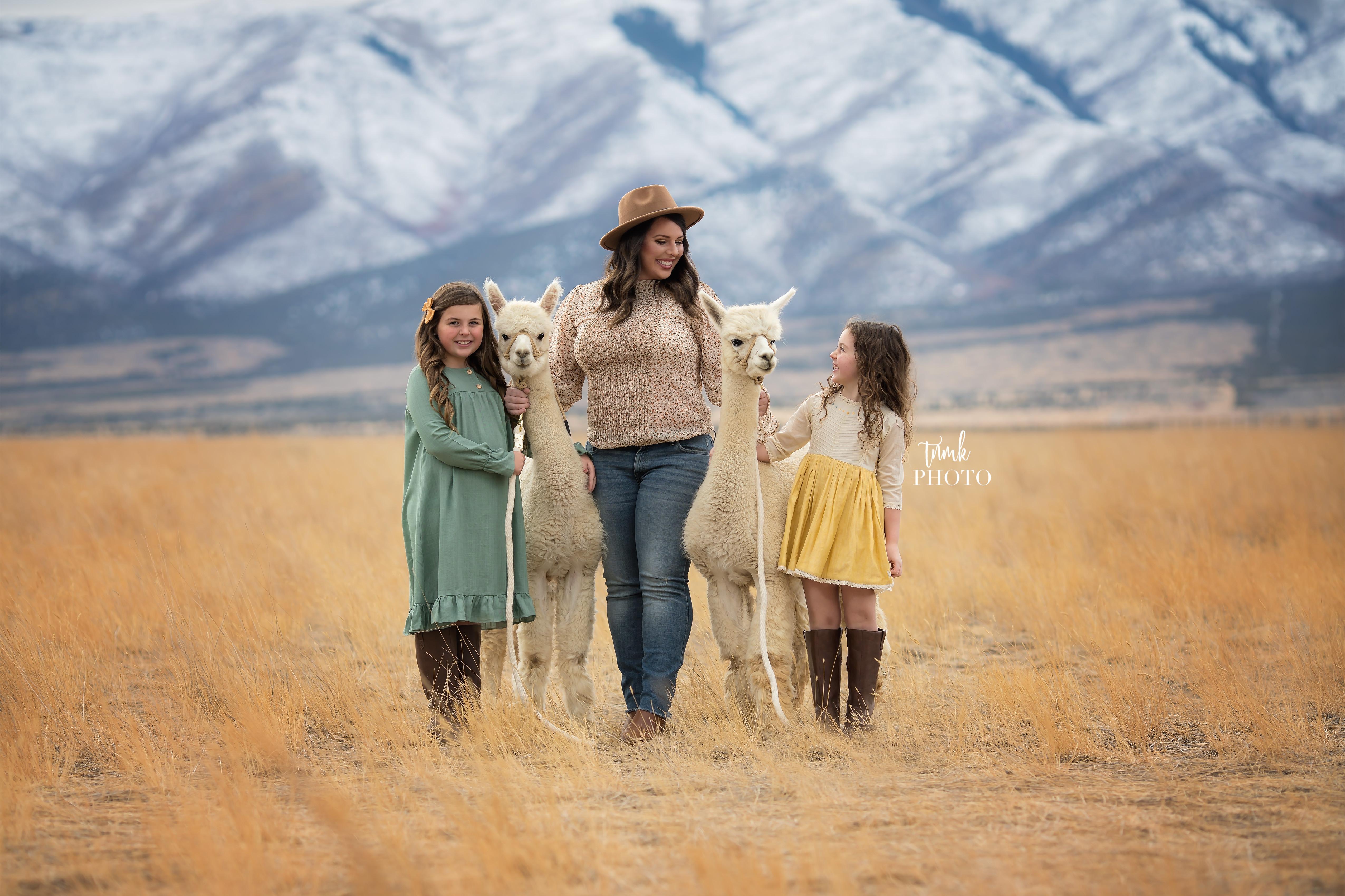 Mini Alpaca Photoshoot Rental