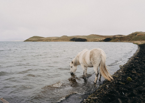 ICELAND LOVE LETTERS