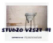 tereza_studiovisit_prezentace7.png
