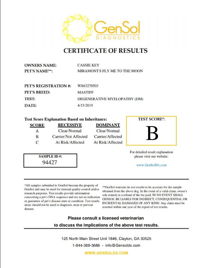 Phoebe DM DNA report