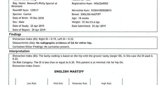 Doug Penn hip report