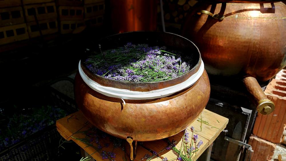 Midva uporabljava ročno kovan tradicionalni bakreni destilator/ alembik, ki zagotavlja najvišjo kakovost končnega izdelka.