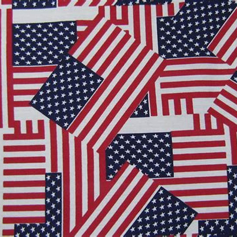 One Hundred American Flags Commemoration