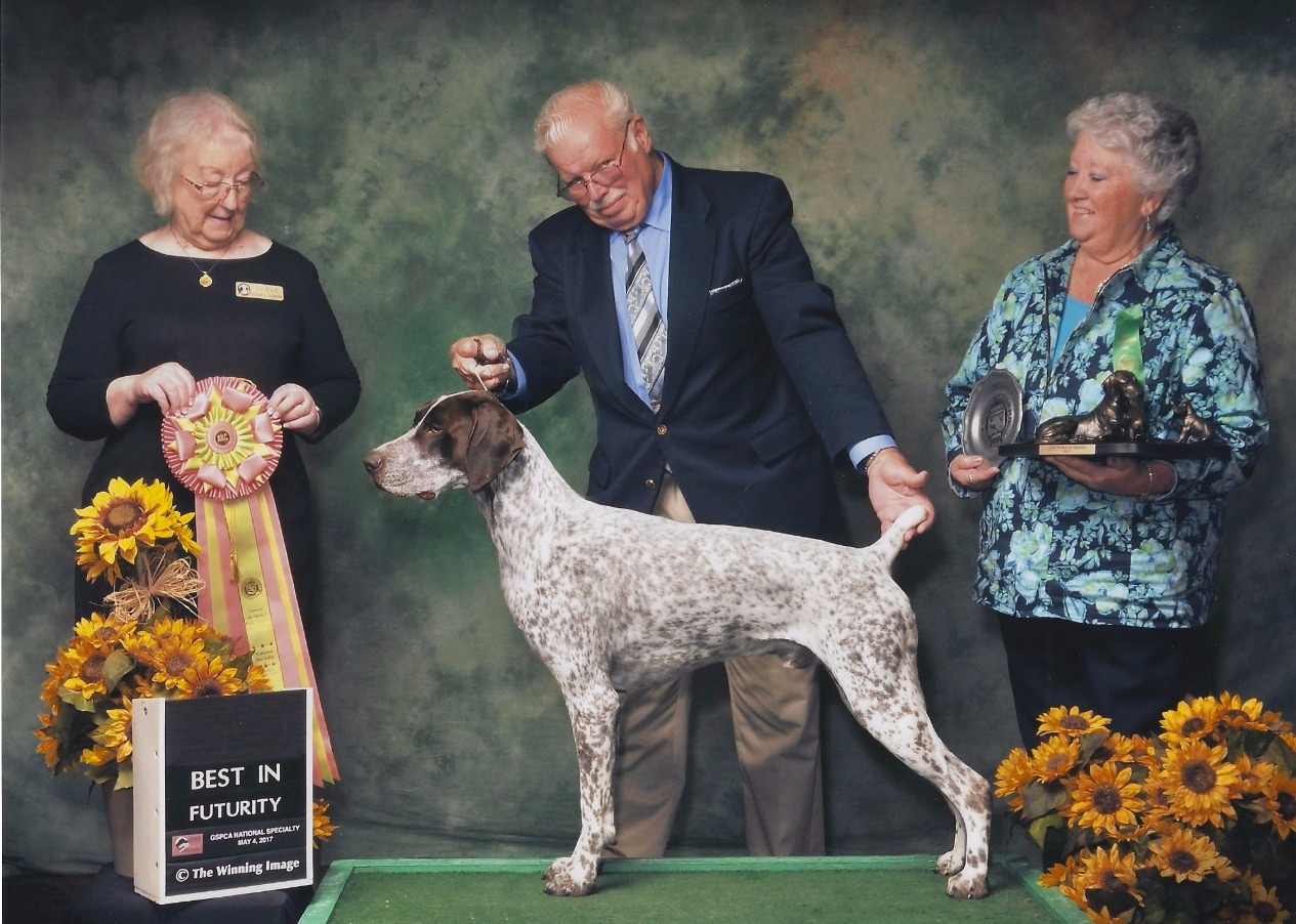 2017 GSPCA Futurity Winner