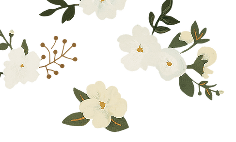 flowers-topleft.png