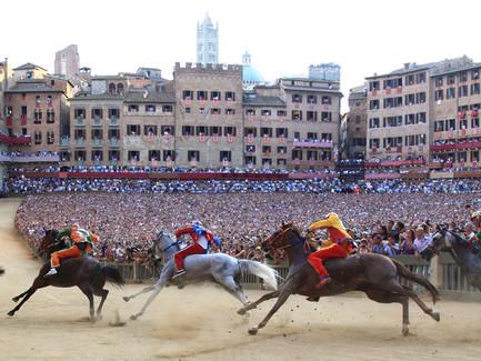 Sporting Agenda - Tickets & Hospitality