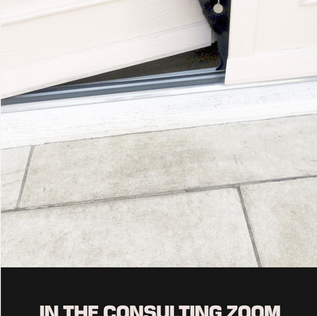 Jera's Jamboree blog review In the Consulting Zoom by Jane Haynes
